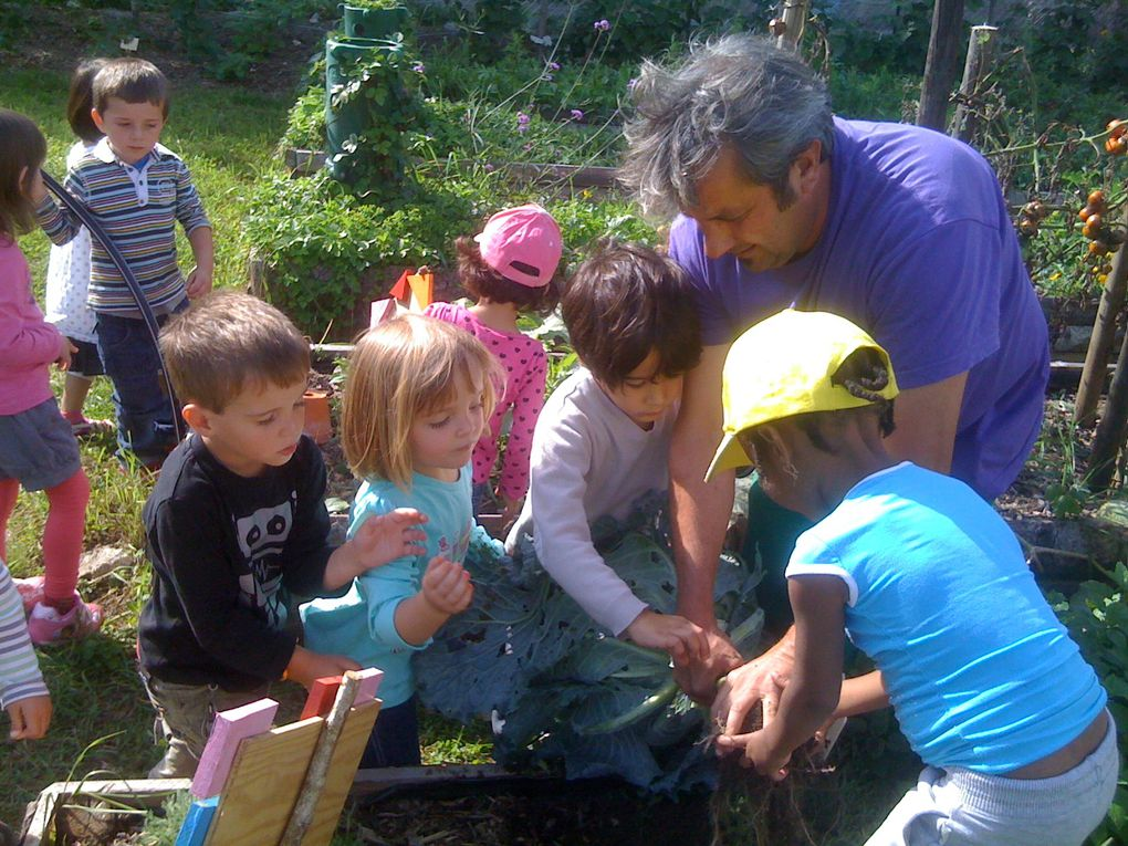 Our gardening newsletter