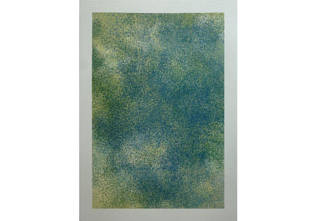 """""""Tapis de verdure"""" - 25 X 35 cm / sérigraphie - série de 15 images à tirage unique"""