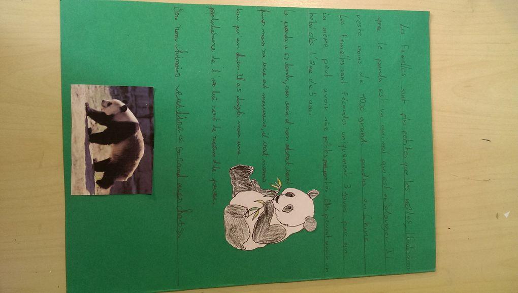 Les enfants ont fait un lapbook sur les pandas.
