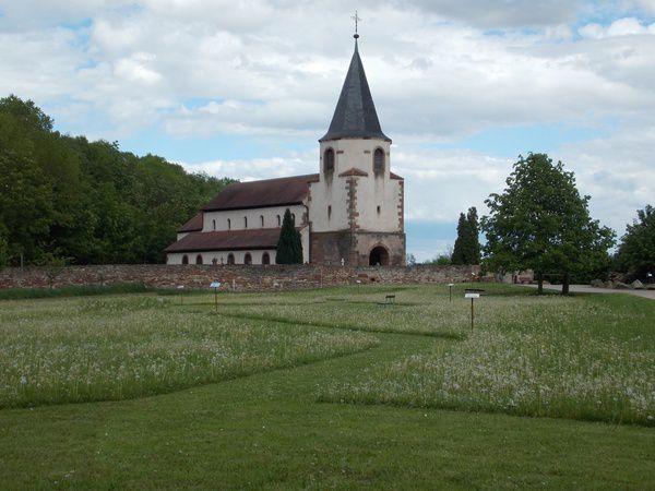 Le Dompeter à Avolsheim