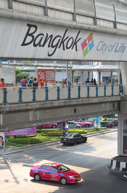 Bangkok 1 - Jungle urbaine