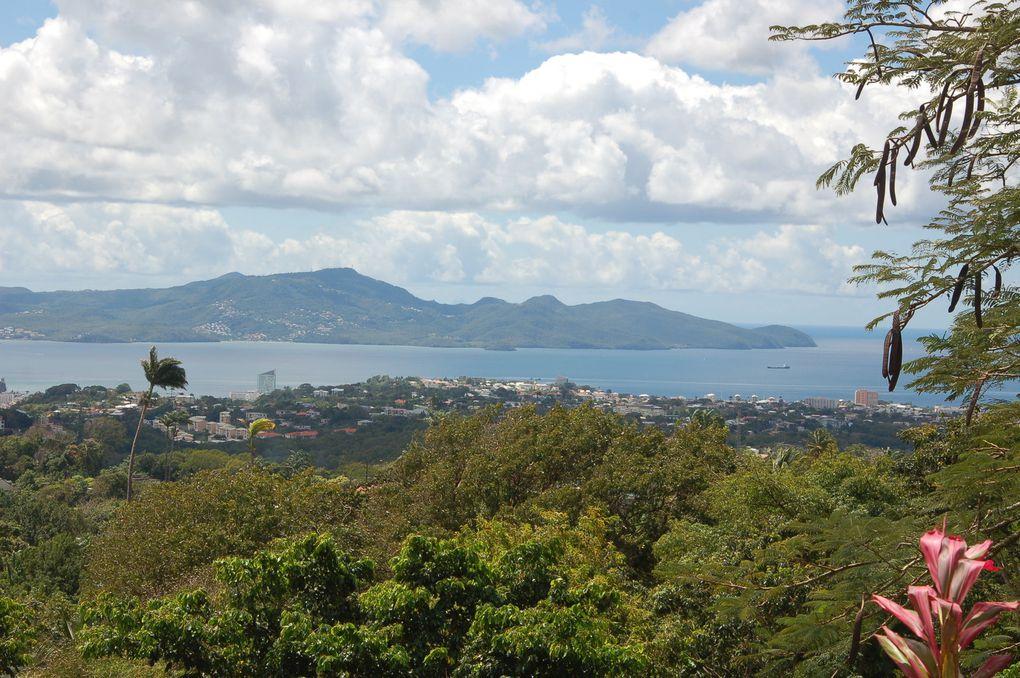Martinique Mars 2014