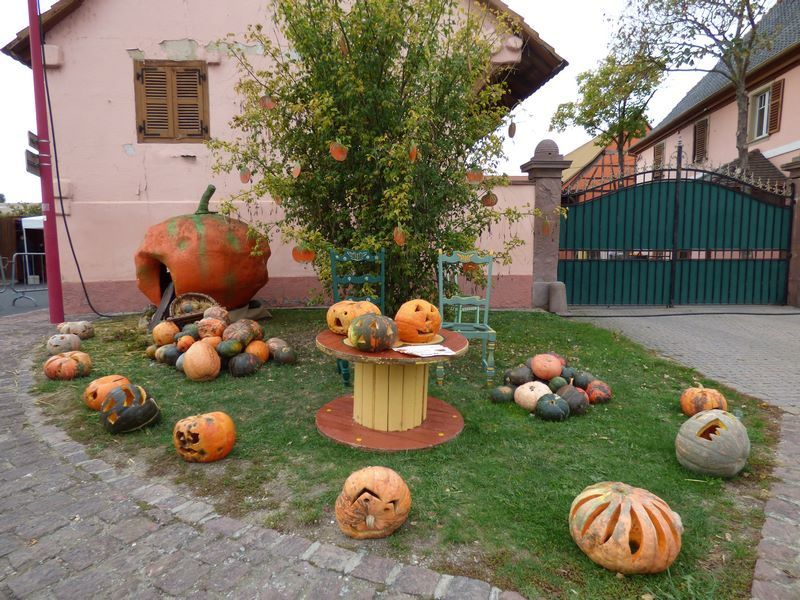 la fête du potiron de jour dimanche 22 octobre 2017