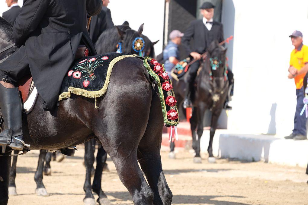SANT JOAN le samedi matin, avec le défilé et la présentation des cavaliers...l'entrée des Héros, un moment solennel plein de respect et de valeurs qui m'a mis la chair de poule....