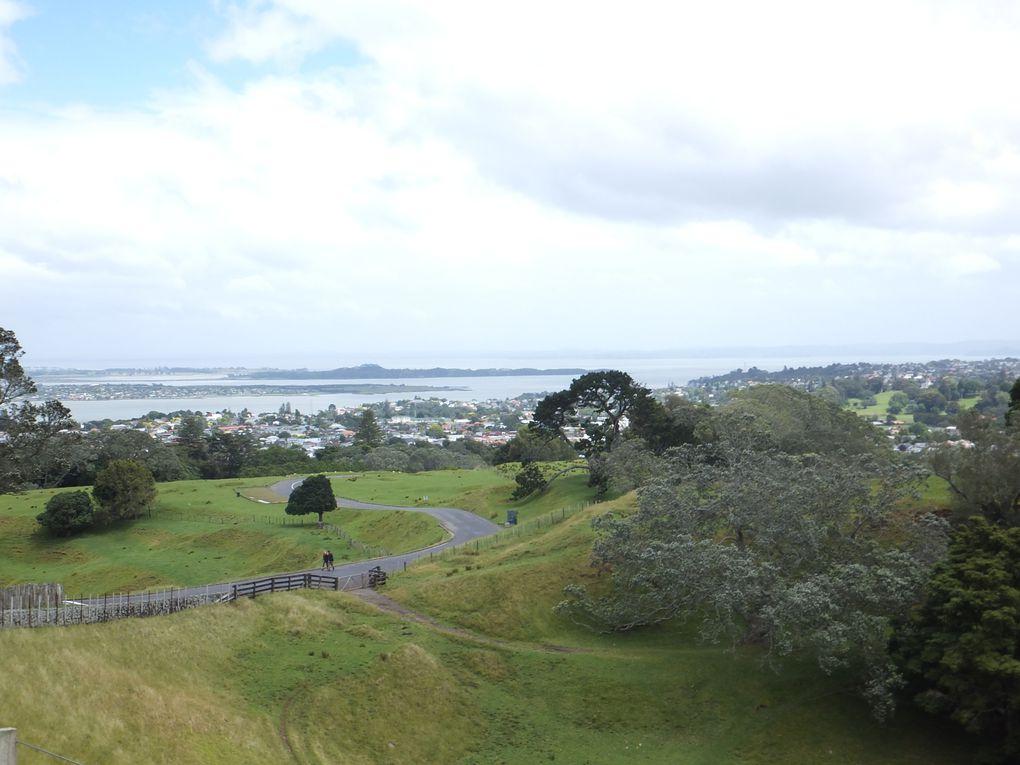 Auckland : mes 3 premiers jours en NZ