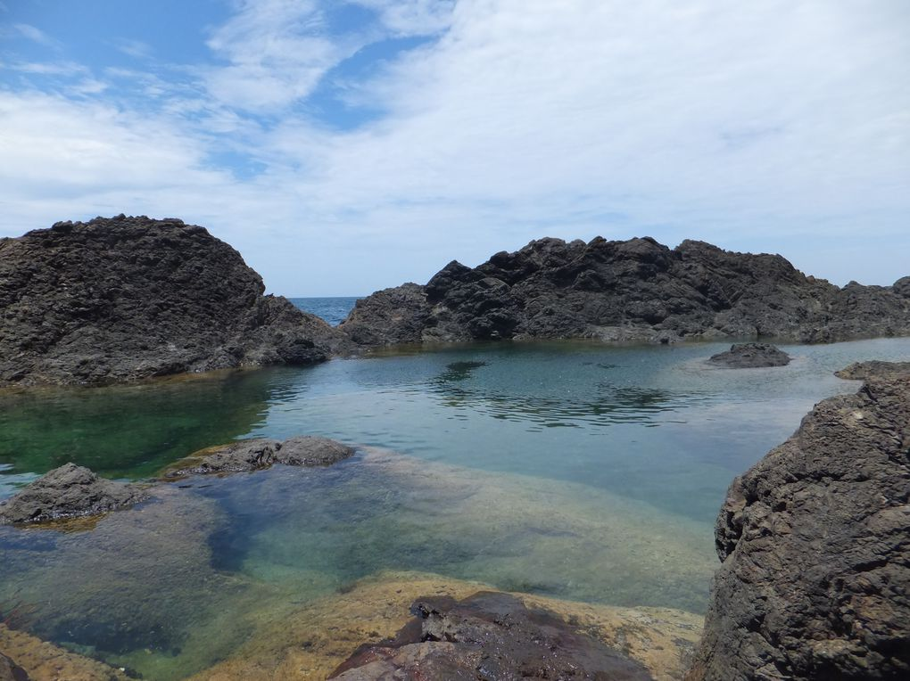 Mermaid pools (piscines des sirènes) & Matapouri Beach