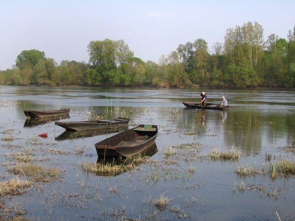 Les bords de Loire, accueillants pour le lecteur et le poète
