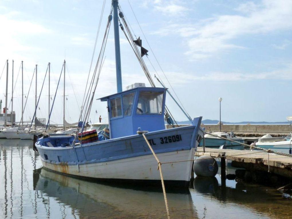 LES DEUX FRERES  TL326091 , dans le port de Port Pothuau a Hyères