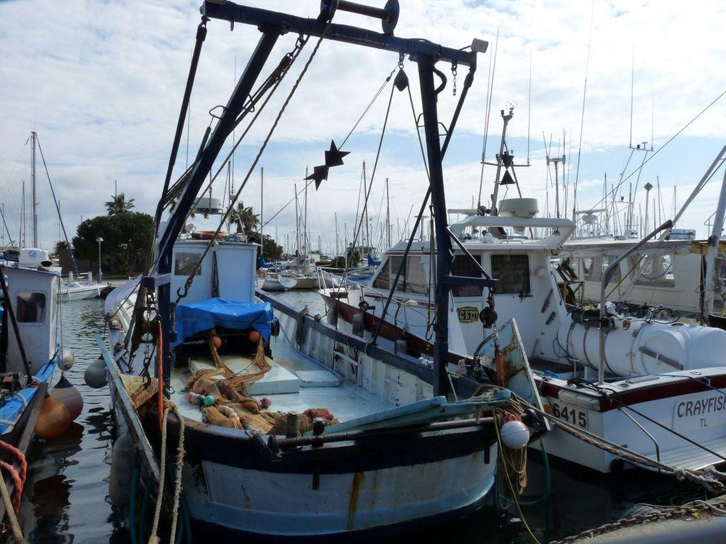MANUEL  TL326095 , Dans les ports de Toulon et Hyères