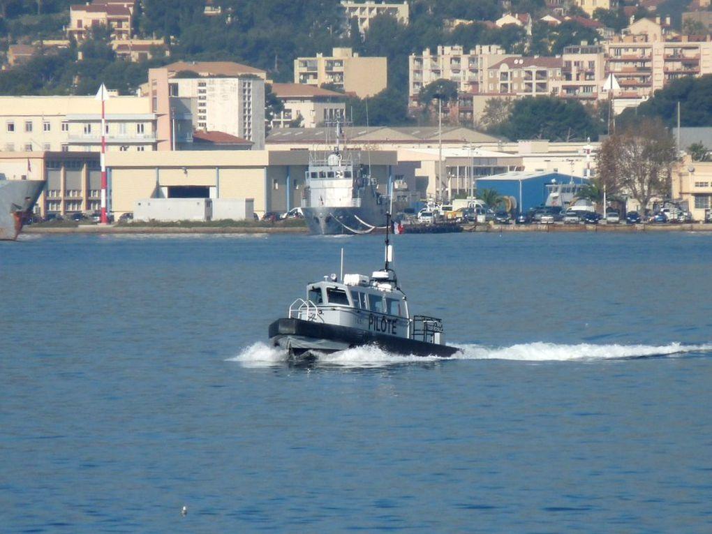TOUR  ROYALE  Y681 , Pilotine du port