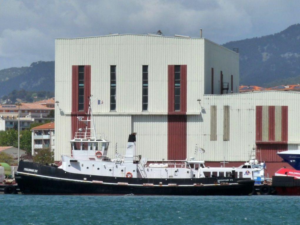 TOULONNAIS XVI , Remorqueur du port de Toulon