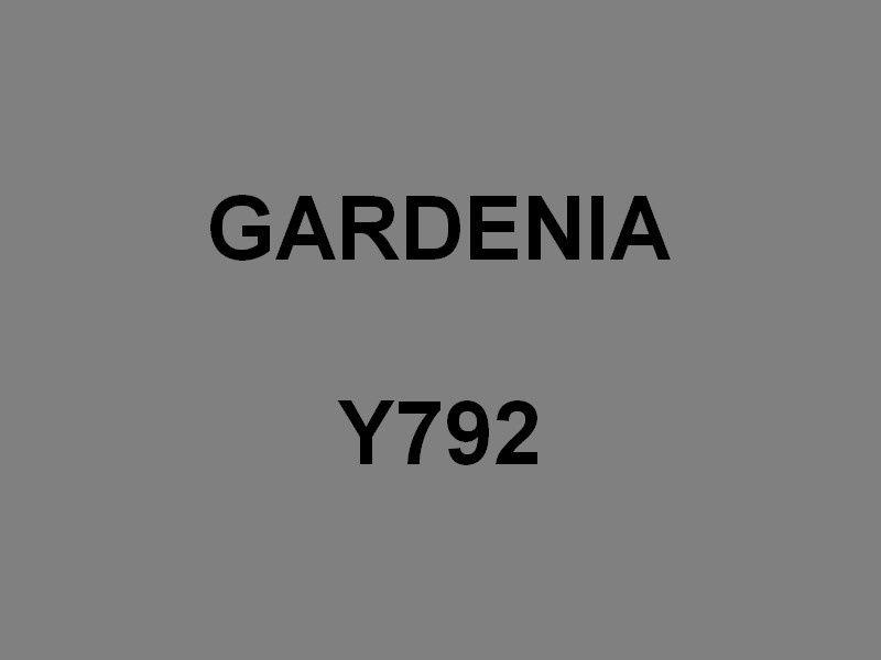 GARDENIA Y792 , vedette support de plongeurs