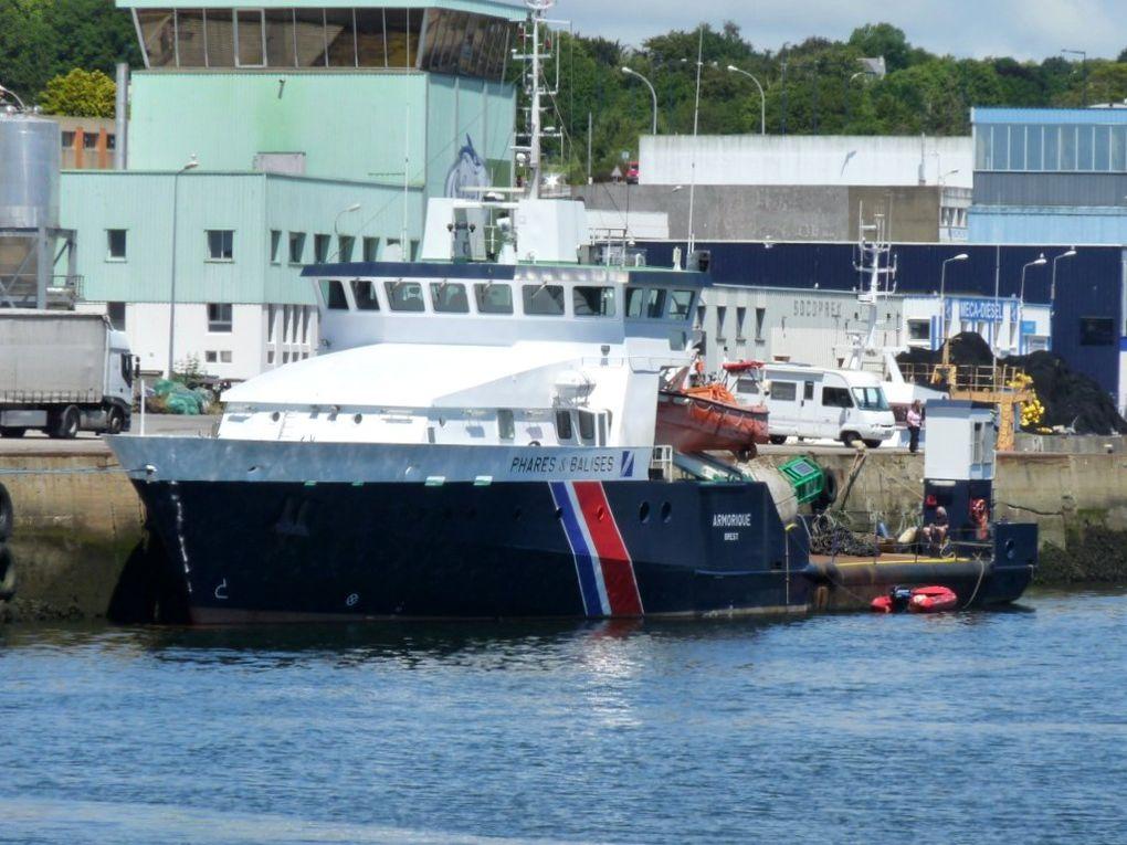 ARMORIQUE , Navire des phares et balises dans le port de Concarneau