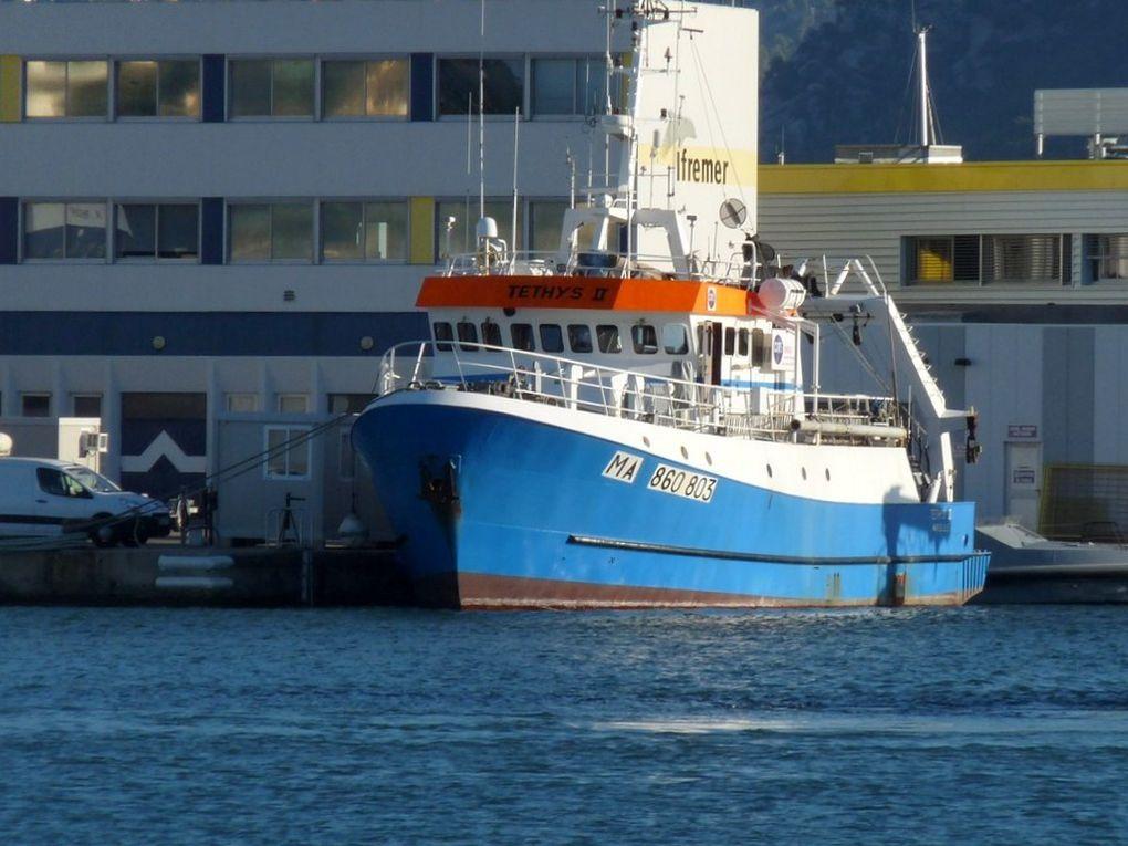 TETHYS II , navire de recherche océanographique
