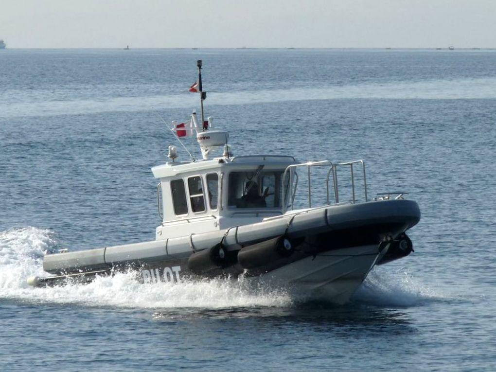 PATROL , pilotine du port de Toulon