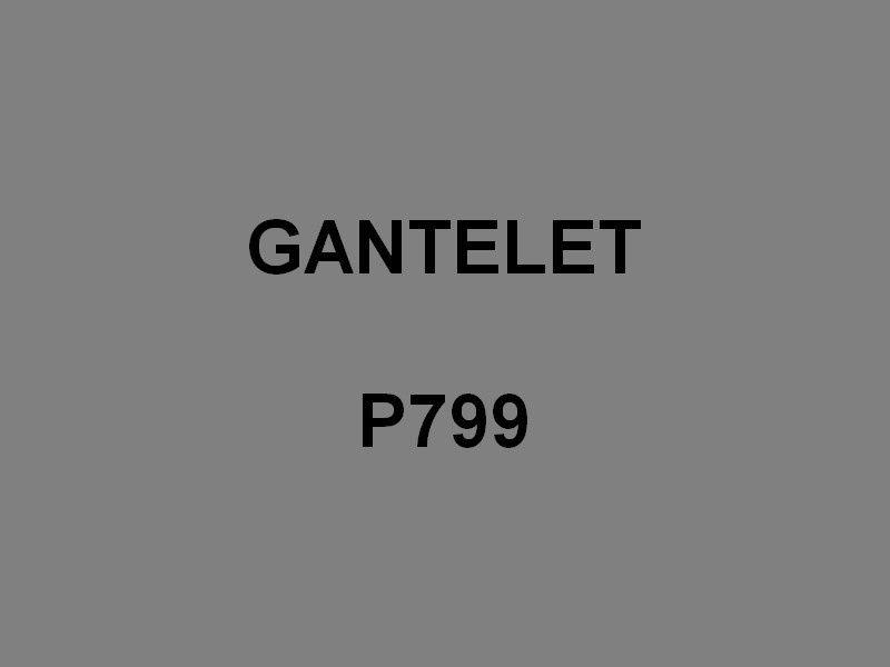 GANTELET  P799 , Vedette de Sureté Maritime et Portuaire , VSMP