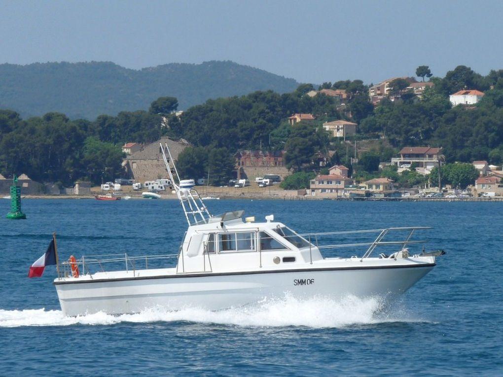 LAVANDE  SMM06 , vedette pour le transport des autoritées (VIP)