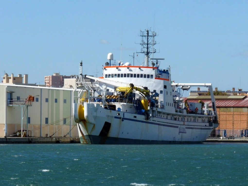 CERTAMEN , navire cablier italien