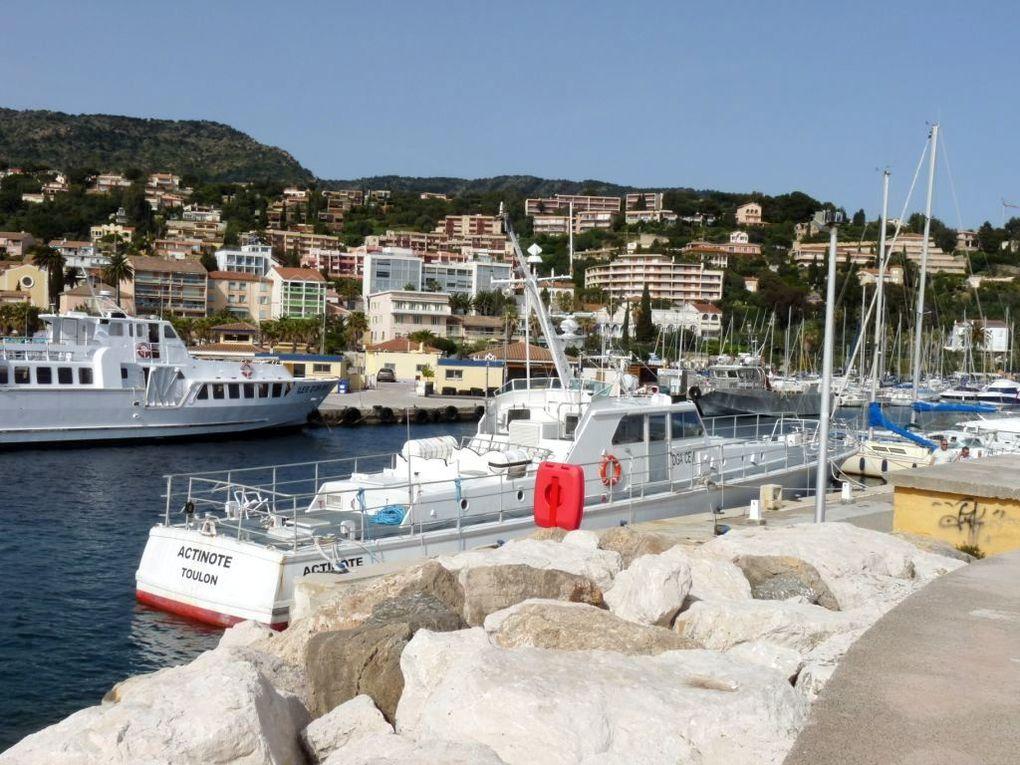 ACTINOTE , Vedette passagers pour le transfert du personnel DCN / DGA entre le Lavandou et l'ile du levant (centre d'essais de la méditerranée (CEM)