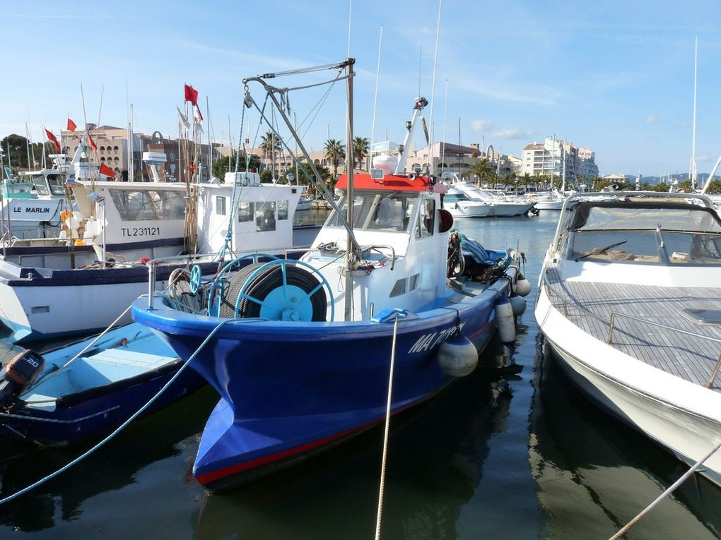 MELISA  MA741371 , dans le port de Hyères