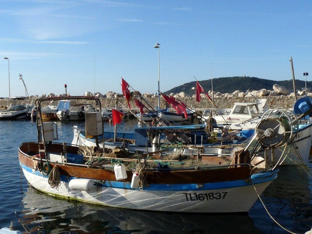 TI MATIN  TL161837 , dans le port de port Saint Louis au Mourillon