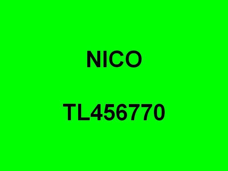 NICO  TL456770 , dans le port de Saint Mandrier