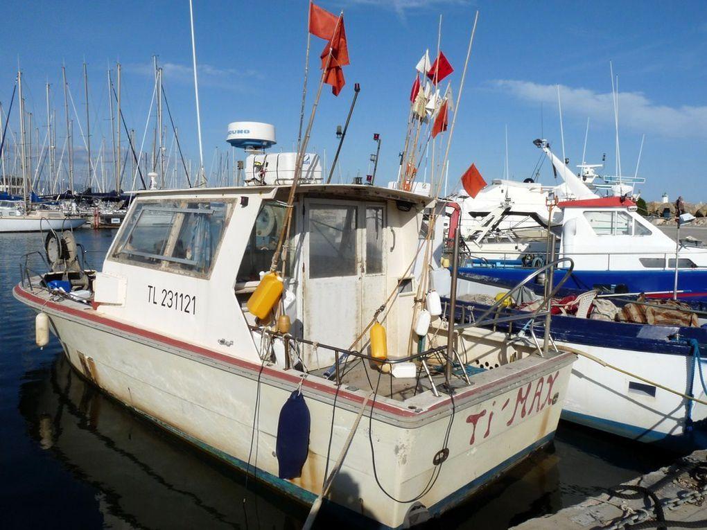 TI'MAX  TL231121 , dans le port de Hyères