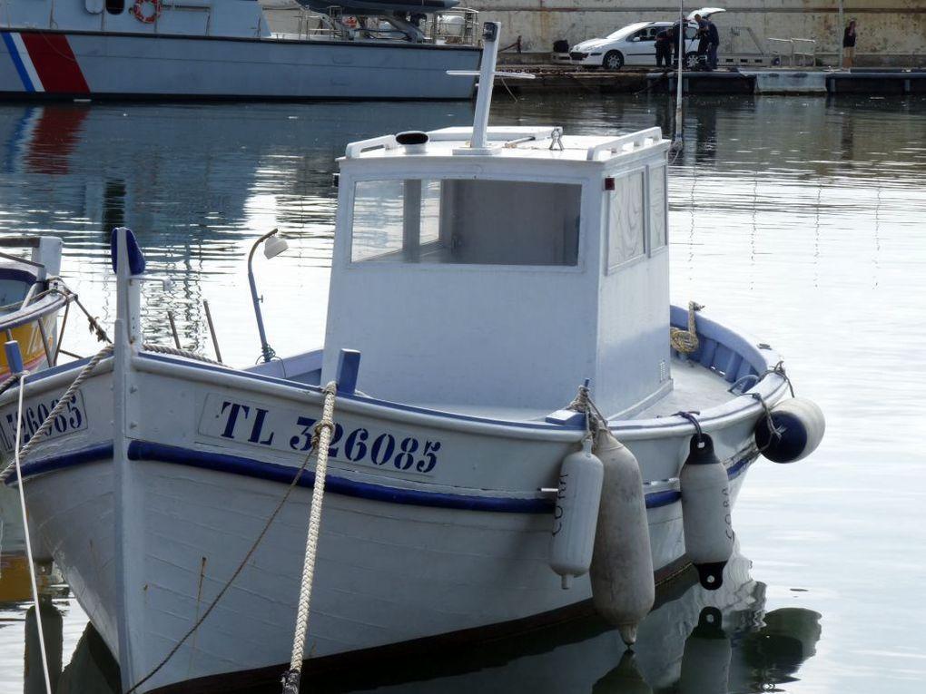 CORA  TL326085 , dans le port de Port Pothuau , Hyères