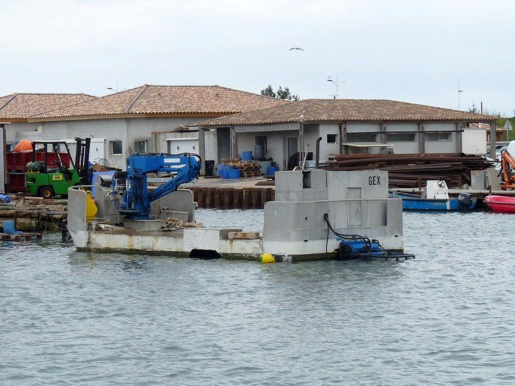 GEX , dans le port des Sablettes , à la Seyne sur mer