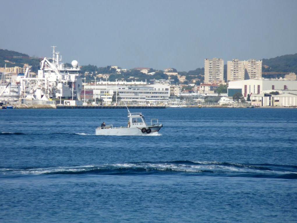 BNT 83 ,vedette de surveillance de la rade et du port  . (BNT : Base Navale Toulon)