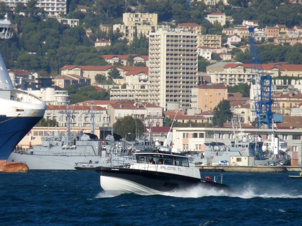 MAGAUD , pilotine du port de Toulon