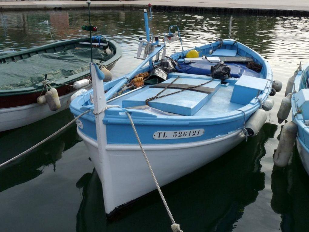CECILE  TL326121 , dans le port de Saint Mandrier