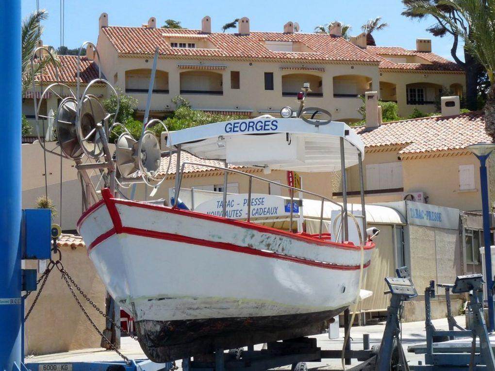 GEORGES    TL308358 , sur le quai dans le port de la Madrague à Saint Cyr sur Mer