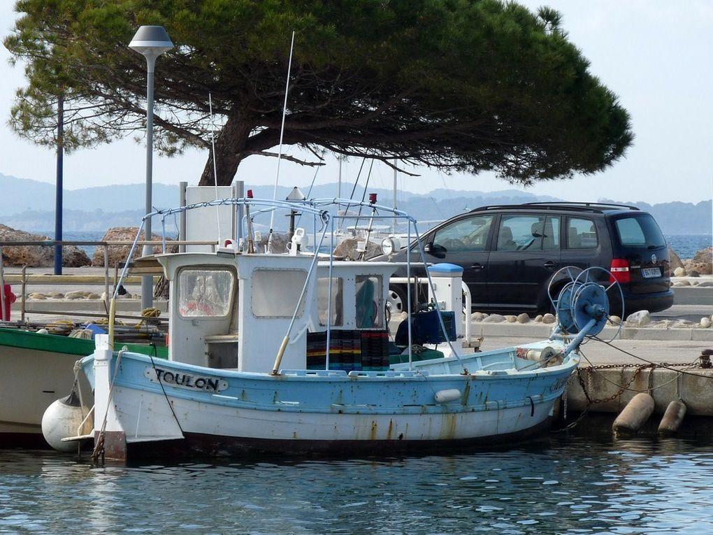 LA JOLIE II PORQUEROLL  , dans le port de Hyères