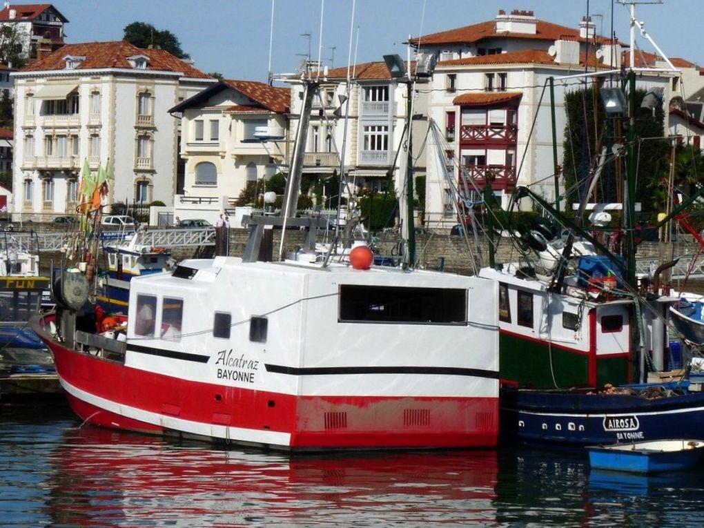 ALCATRAZ  BA864741 , dans le port de Saint Jean de Luz