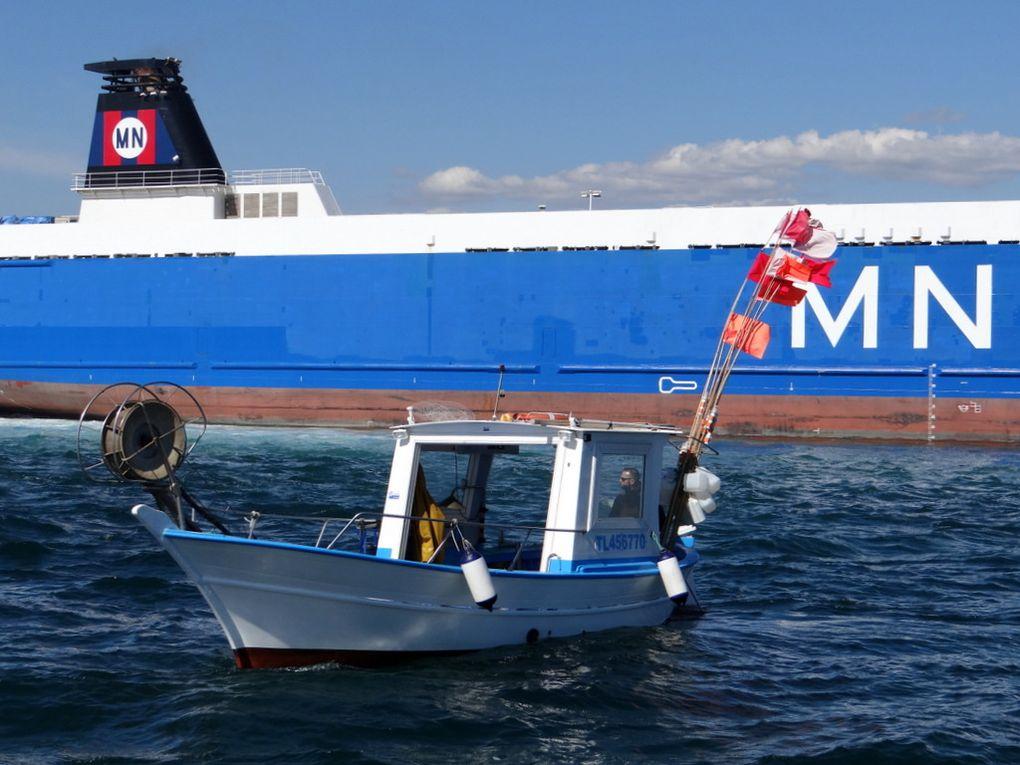 NICO  TL 456770 , à la Seyne sur Mer