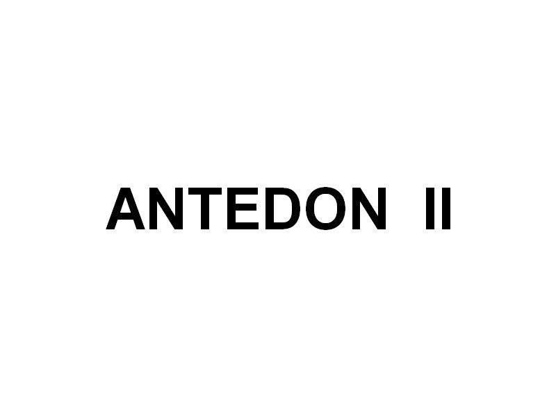 ANTEDON II