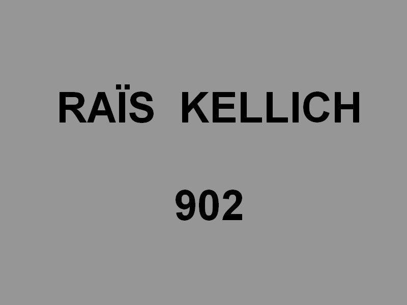 RAÏS KELLICH  902 , frégate de la marine algérienne