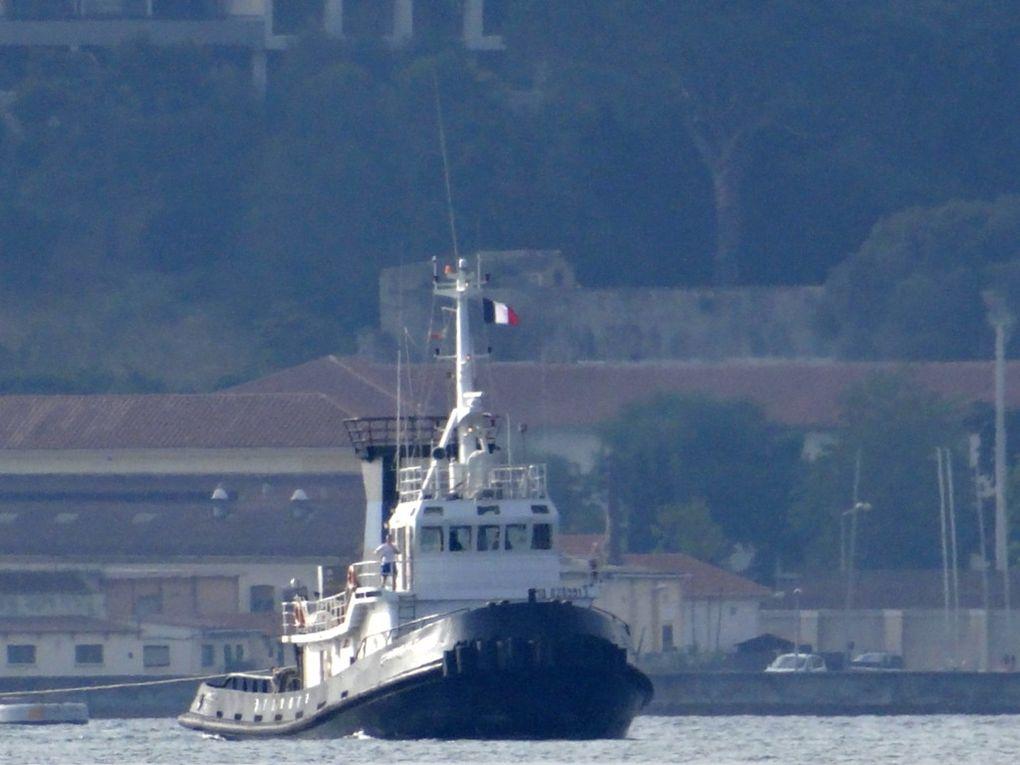 GIANEMILIO  C , remorqueur italien dans la petite rade de Toulon