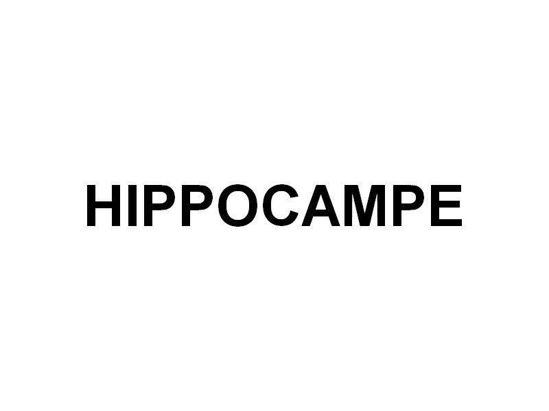 HIPPOCAMPE , batiment d'un club de plongée
