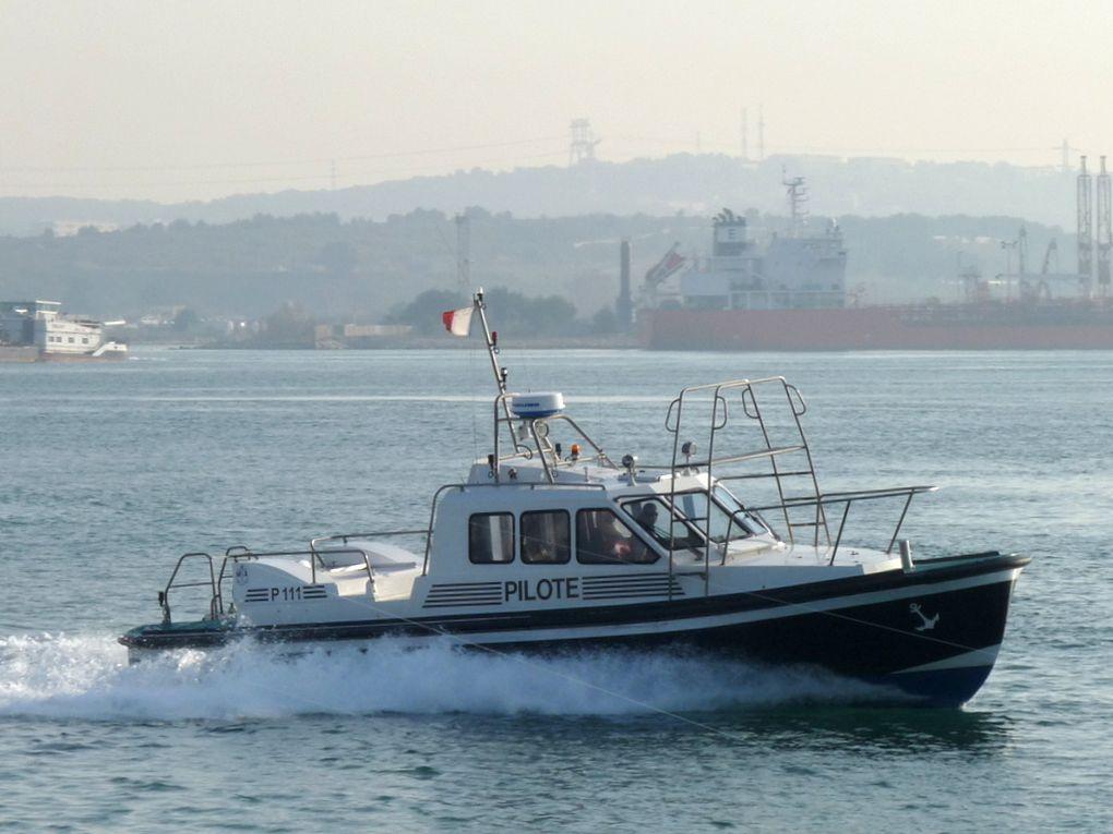 P 111  , pilotine  de Port de Bouc  / Fos sur Mer