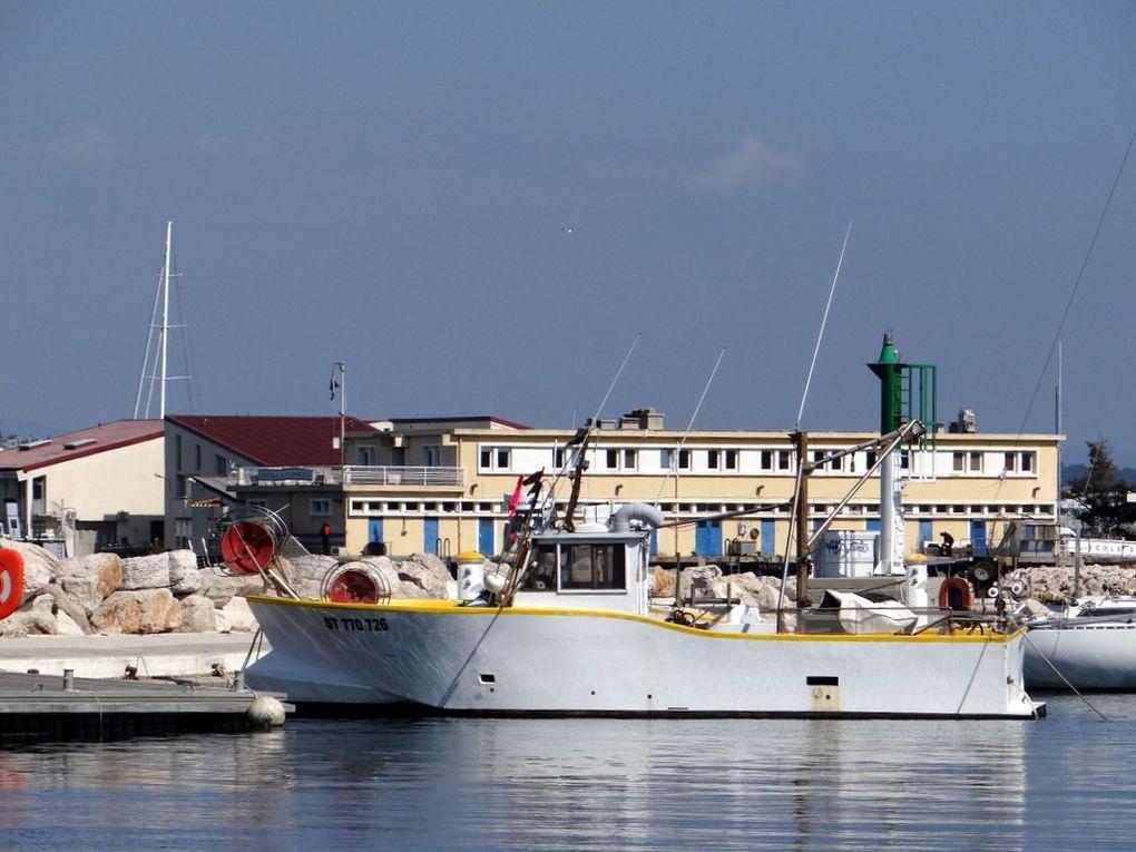BIENHEUREUX  , ST 770726 ,dans le port de Saint Mandrier