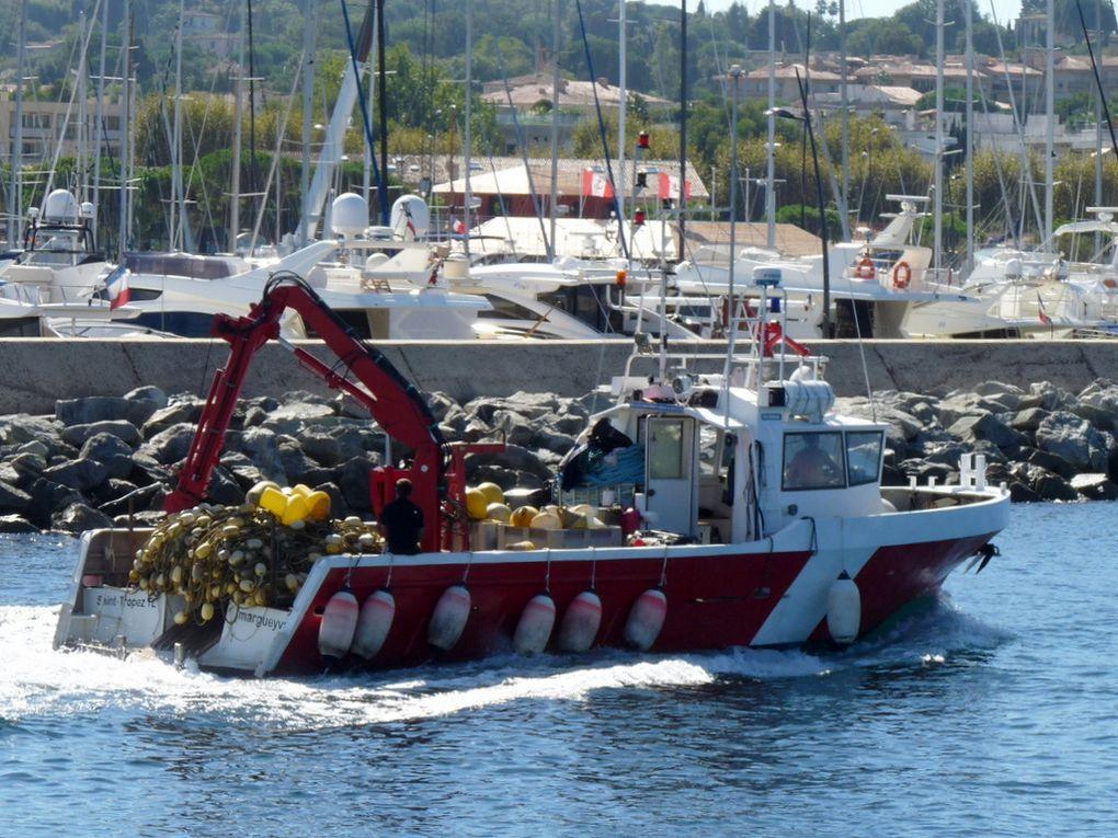 MARGUEVAN  II , dans le golfe et port de Saint Tropez