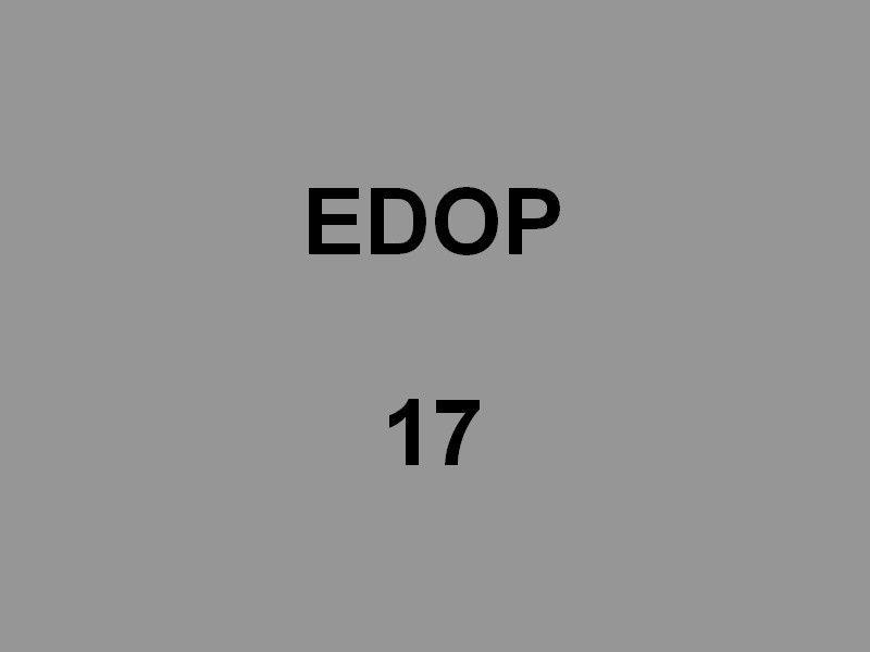 EDOP 17 , Zodiac pour la surveillance de la base navale