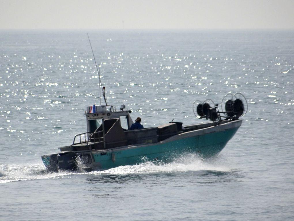 MYLENE 3   MT917321 , dans le golfe de Fos sur mer et la rade de Port de Bouc , le 19 mars 2015