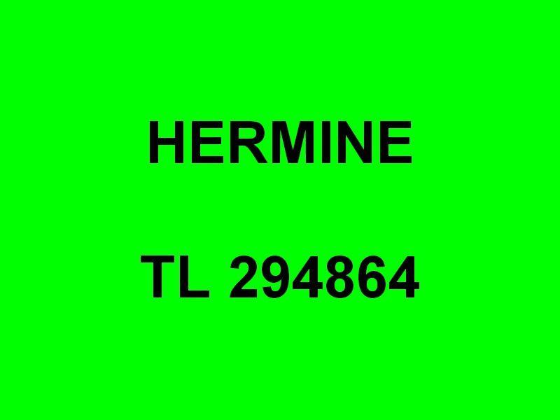HERMINE TL 294864 ,  dans le port de St Mandrier  et en petite rade le 18 mars 2016