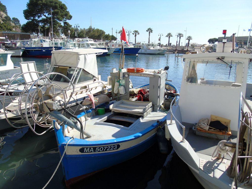 FANFAN - MARION  MA507223 , dans le port de Cassis le 23 avril 2017