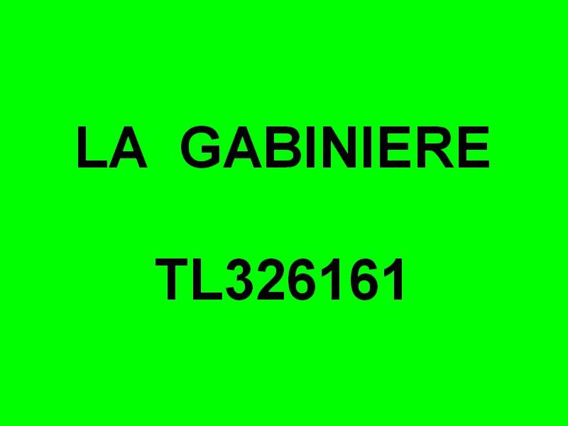 LA GABINIERE  TL326161 ,dans le port du Lavandou