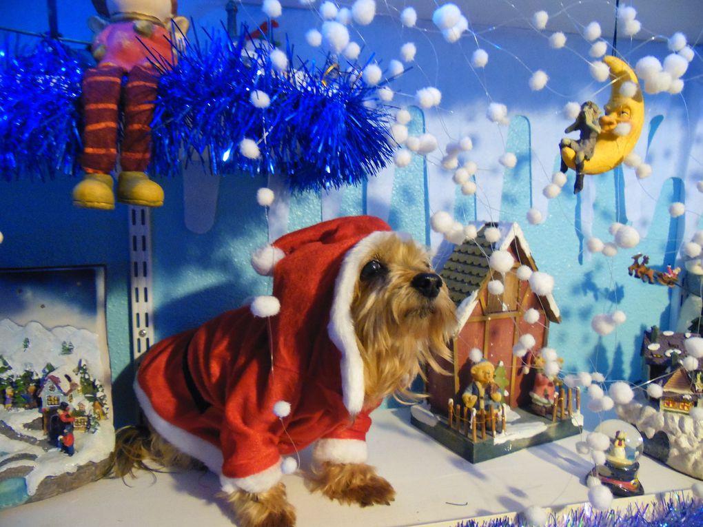 Toy se prend pour le père Noël !