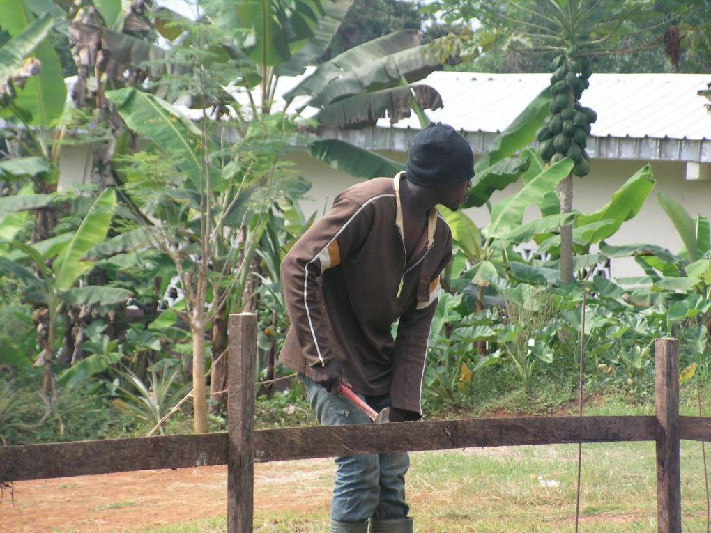 Le chef de chantier et les bénévoles creusent la tranchée